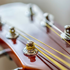 Strings  by Ovidiu Sova - Artistic Objects Musical Instruments ( music, player, sound, strings, guitar,  )