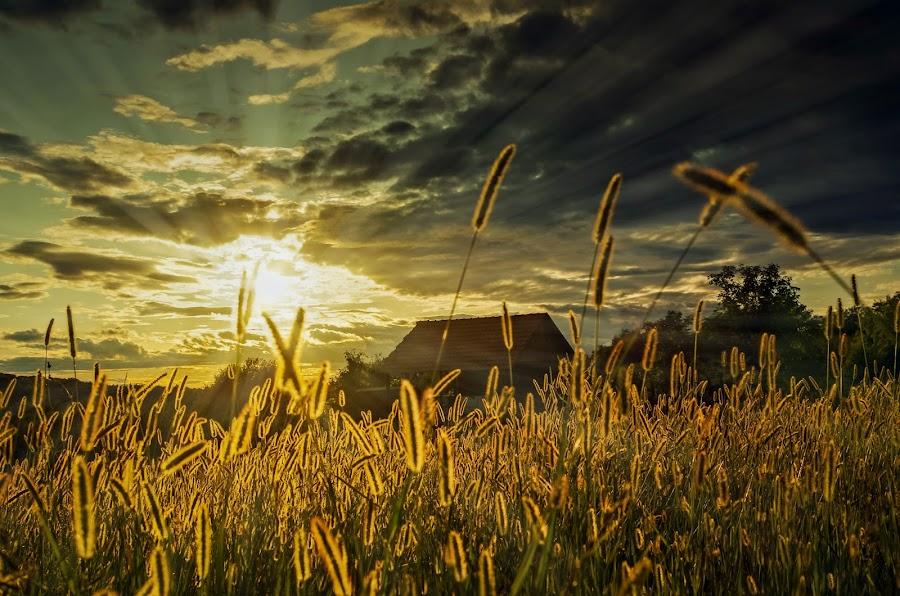 The sun by Branko Balaško - Digital Art Abstract ( clouds, sky, autumn, sunset, sun )