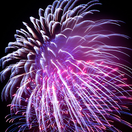 Hue_20150326_21.11.14 by Chantal Reed - Abstract Fire & Fireworks ( colour, purple, hue, fireworks, show, vietnam, pyrotechnical, night sky )