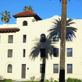 Shadows on Santa Clara College by Christine B. - Buildings & Architecture Other Exteriors ( santa clara college, california, palm trees, shadows )