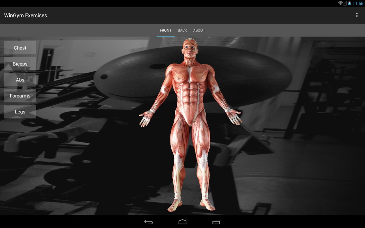 WinGym Exercises Premium Screenshot 4
