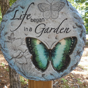 Life began in a Garden by David Jarrard - Artistic Objects Signs ( signs.insects, butterfly,  )