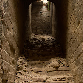 The Forgotten Stairs by Akash Dubey - Buildings & Architecture Architectural Detail ( stairs, chunar, fort of chunar, chunar mirzapur, architecture in india, chunar fort )