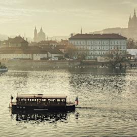 by Irena Brozova - City,  Street & Park  Skylines