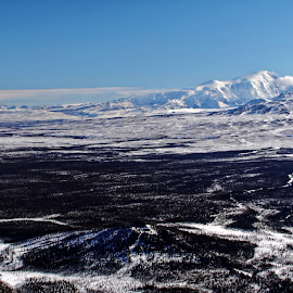 Winter Copper Valley from 3000 Feet by Marc Baisden - Landscapes Mountains & Hills ( ak, adventure, height, seasons, alaska, travel, copper valley, bush planes )