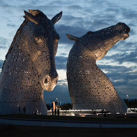 The Kelpies by Stuart Giblin - Buildings & Architecture Statues & Monuments ( water, scotland, structure, kelpies, horses, metal, falkirk, horse, canal )