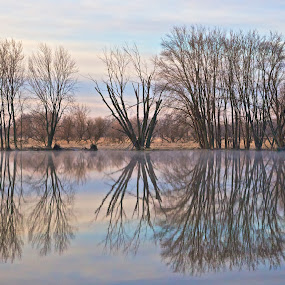 Reflections of Dawn by Mark Theriot - Landscapes Waterscapes