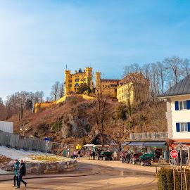 Hohenschwangau castle, Füssen, Munich by Roberto Gonzalo Romero - Buildings & Architecture Public & Historical ( munich, füssen, castle, hohenschwangau )