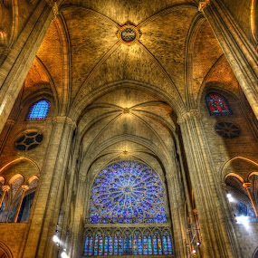 Notre Dame by Gaurav Dhup - Buildings & Architecture Places of Worship ( paris, notre dame, church, cathedral, architecture )
