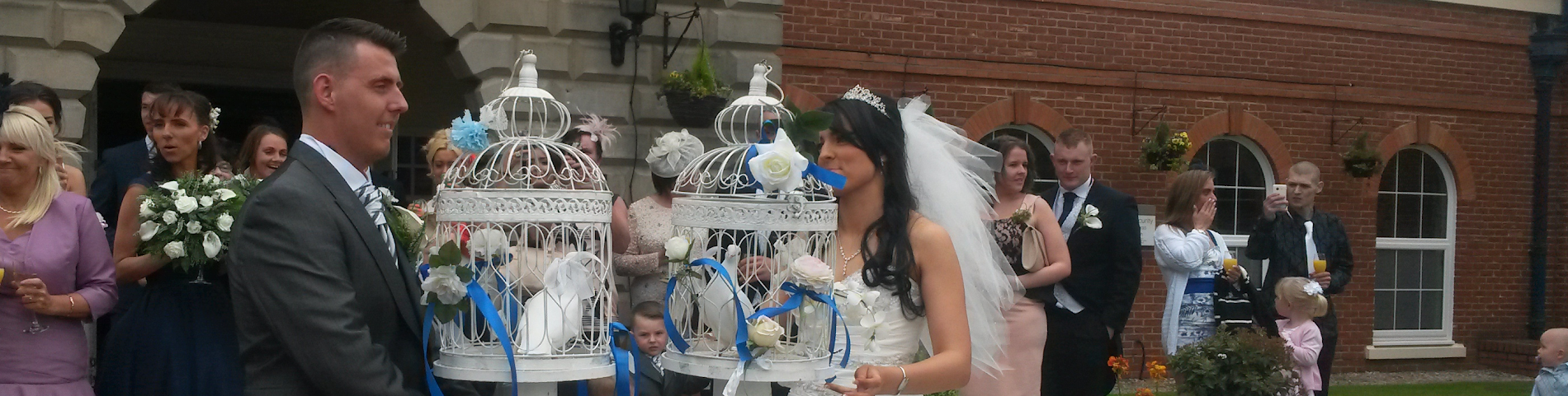 White Dove Release for Weddings in Wigan