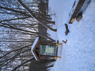 Зима в парке Бельмонтас
