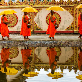 Monks near a Kmher Temple by Andre Minoretti - People Street & Candids ( umbrellas, monks, bac lieu, reflections, vietnam )