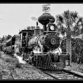 Traves Eustes & Gulf RR by James Eickman - Transportation Trains