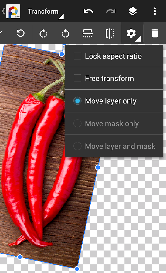 PhotoSuite 4 Pro Screenshot 6
