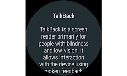 screenshot of Google TalkBack