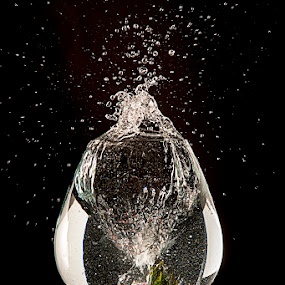 Smashing Drinks 5 by Amelia Falk - Food & Drink Fruits & Vegetables