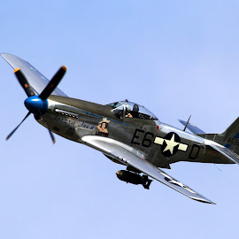 P51 Mustang Sierra Sue 2 by Bruce Arnold - Transportation Airplanes