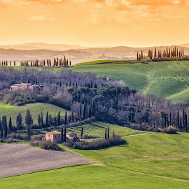 Tuscany by Pascal Hubert - Landscapes Prairies, Meadows & Fields