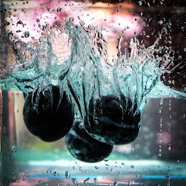 Plums splashed by Suzana Trifkovic - Food & Drink Fruits & Vegetables ( water, fruit, splashing, splash, food, plums, splashed )