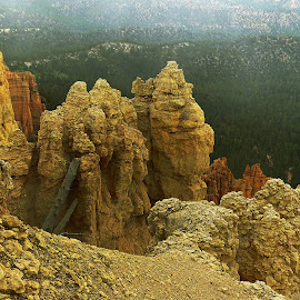 Bryce Canyon National Park by Jane Spencer - Landscapes Caves & Formations ( byrce canyon, national park, utah, hoodoos, spring )
