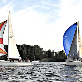 Racing on the Columbia by Leise Wease  Photography - Sports & Fitness Watersports ( sailing, racing, spinnaker, sail, sailboat )