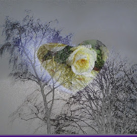love is in the air by Paul Wante - Digital Art Abstract ( abstract, love, art, air, digital )