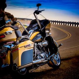 Roaming the Beartooth by Anthony Balzarini - Transportation Motorcycles ( #harley #davidson #beartoothpass #photography,  )