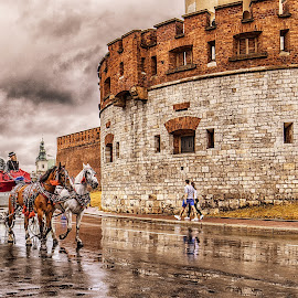 Cracow by Ania Wu - City,  Street & Park  Street Scenes ( #cracow #city #street #poland #holiday #horses )