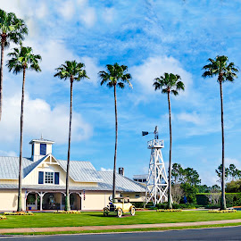 Celebration Golf Club near Kissimmee, Florida by Réjean Côté - Sports & Fitness Golf ( car, blue, green, trees, auto, golf, wind mill, ford, palms )