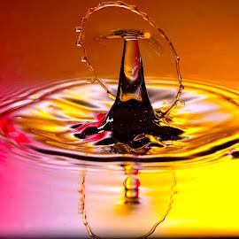 Droplet Drama by Nirmal Kumar - Abstract Water Drops & Splashes