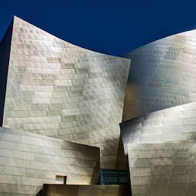 Walt Disney Concert Hall by Johannes Bichmann - Landscapes Travel