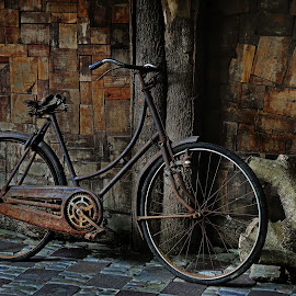 ONTEL by Abhan Creative - Transportation Bicycles