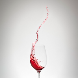 by Markus Gann - Food & Drink Alcohol & Drinks ( expression, concept, splash, one, flow, object, restaurant, goblet, merlot, event, grape, drink, glass, action, pour, motion, cabernet, celebrate, closeup, gourmet, winery, wine, abstract, bowl, anniversary, symbol, glassware, romantic, white, luxury, rose, red, liquid, splashing, beverage, alcohol, background, bordeaux )