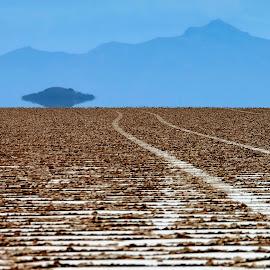 Salar de Uyuni by Tomasz Budziak - Landscapes Deserts ( bolivia, landscapes, deserts )