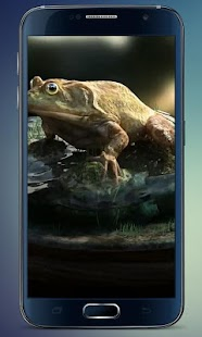 Frog Amazing Graphics LiveWP - screenshot