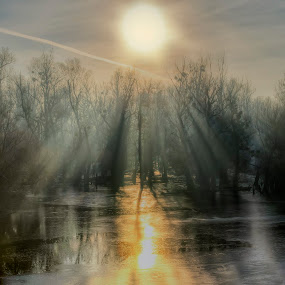 Foggy sunrise by Vanja Vidaković - Landscapes Sunsets & Sunrises ( foggy, baranja, croatia, river drava, sunrise )