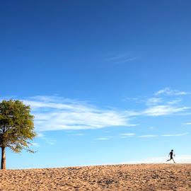 Heber Run by Joel Thompson - City,  Street & Park  City Parks ( child, sand, tree, nature, color, heber springs, play, lake, beach, run, photo, running, arkansas )