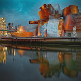 Guggenheim museum, Bilbao, Spain by Michaela Firešová - Buildings & Architecture Public & Historical ( spain, modern, museum, bilbao, architecture )