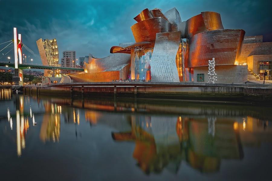 Guggenheim museum, Bilbao, Spain by Michaela Firešová - Buildings & Architecture Public & Historical ( spain, modern, museum, bilbao, architecture )