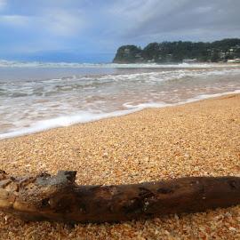 Stick On The Beach by Geoffrey Wols - Landscapes Beaches ( water, sand, stick, beach, central coast, avoca beach )