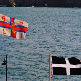 RNLI in Cornwall by DJ Cockburn - Artistic Objects Signs ( england, coastline, flag, cornwall, st piran's flag, shore, emergency, newquay harbour, rnli, sea, coast, atlantic, royal national lifeboat institution, newquay, ocean, an gwynn ha du, uk, baner peran, emblem, rescue )