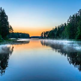 Fairis dancing in the night by Ewa Nilsson - Landscapes Weather ( water, sweden, scandinavia, lapland, sunset, wildlife, trees, mist )