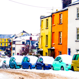 Saturated colours by Wendy Richards - City,  Street & Park  Neighborhoods ( colour, bright, snow, saturated,  )