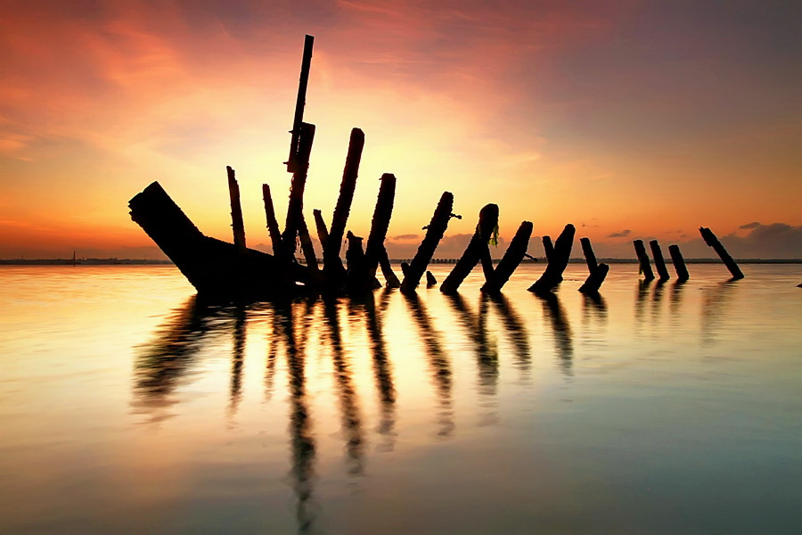 The Fossil by Agoes Antara - Landscapes Waterscapes