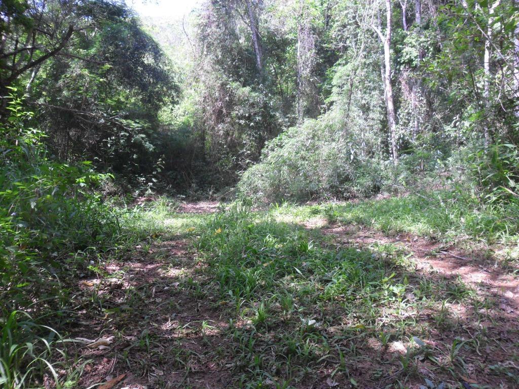 Fazenda / Sítio à venda em Itaipava, Petrópolis - Foto 3