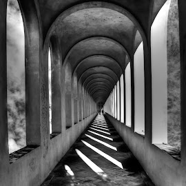 Gallery to unknowed by Gianluca Presto - Buildings & Architecture Architectural Detail ( nobody, arch, black and white, gallery, arches, silence, perspective, architectural detail, pisa, architecture, italy, design )
