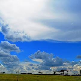 Big Beautiful Texas Sky by Gunn Photography - Landscapes Cloud Formations ( sky, blue, texas, big )