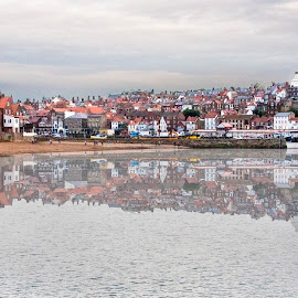 Whitby from the East Pier by Martin Davis - Landscapes Travel ( reflection, bay, beach, architecture )