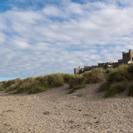 Bamburgh Castle by Sue Hobson - Landscapes Beaches