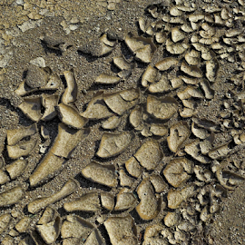 Dried Mud by Deborah Russenberger - Abstract Patterns (  )